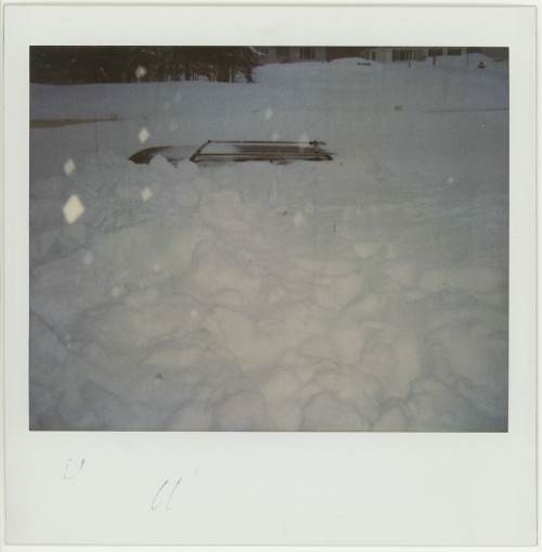 Vintage Polaroid Spectra. Vintage Polaroid Spectra. Big snowstorm of 1992, Moncton NB, 1992.